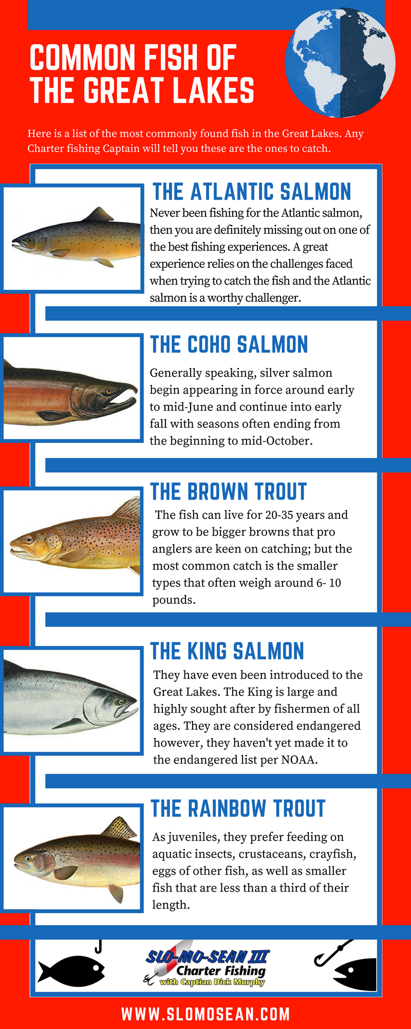 Different types of fish caught in the Great Lakes